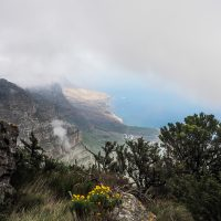 india venster trail south africa